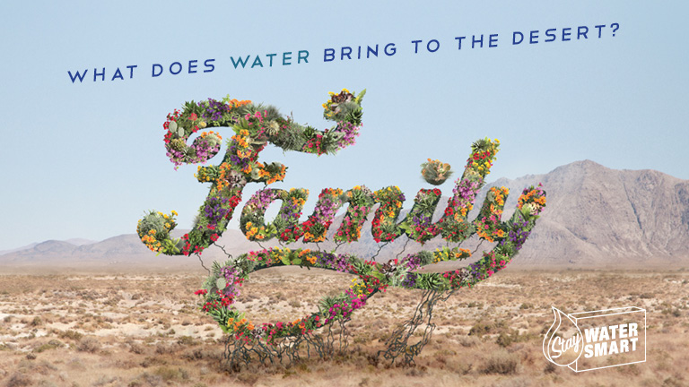 "flowers forming the word ""family"" in the desert"