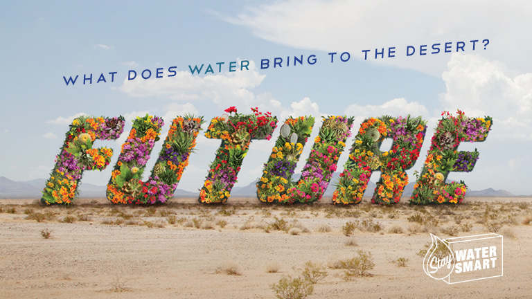 "flowers forming the word ""future"" in the desert"