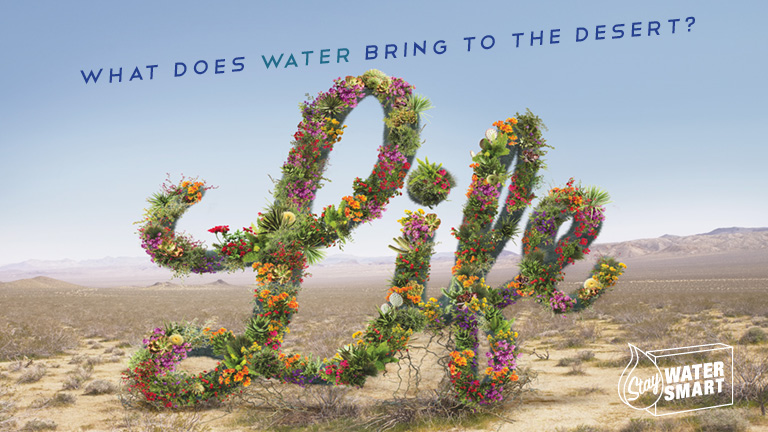"flowers forming the word ""life"" in the desert"
