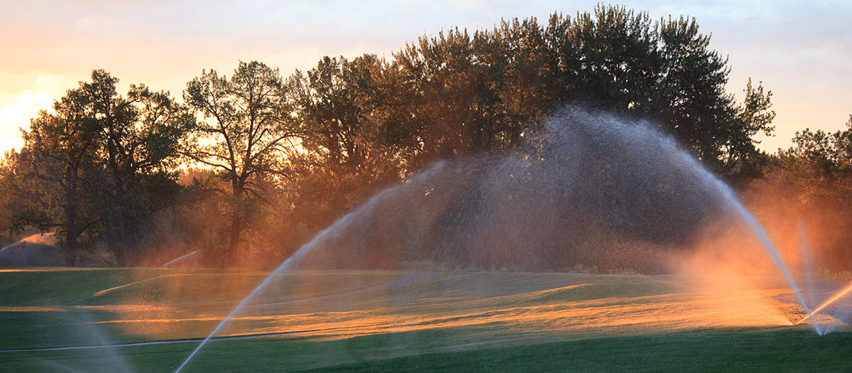 Golf course with sprinklers running at sunset