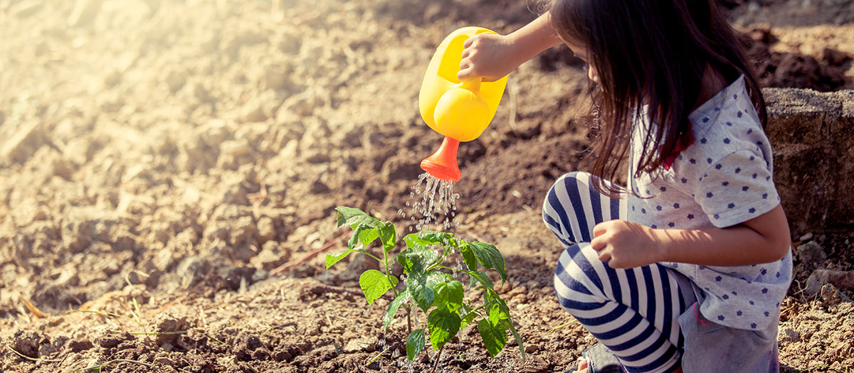 Little girl watering plant with watering can