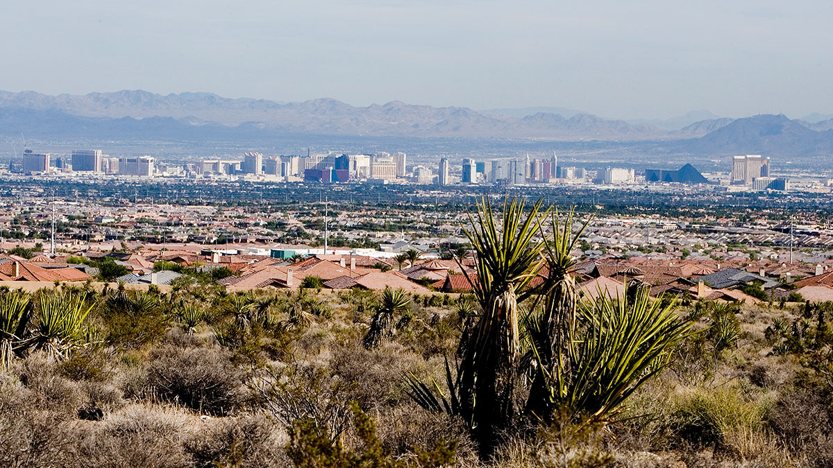 The Las Vegas Valley and skyline