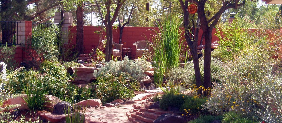 Plants and trees featured in home landscaping