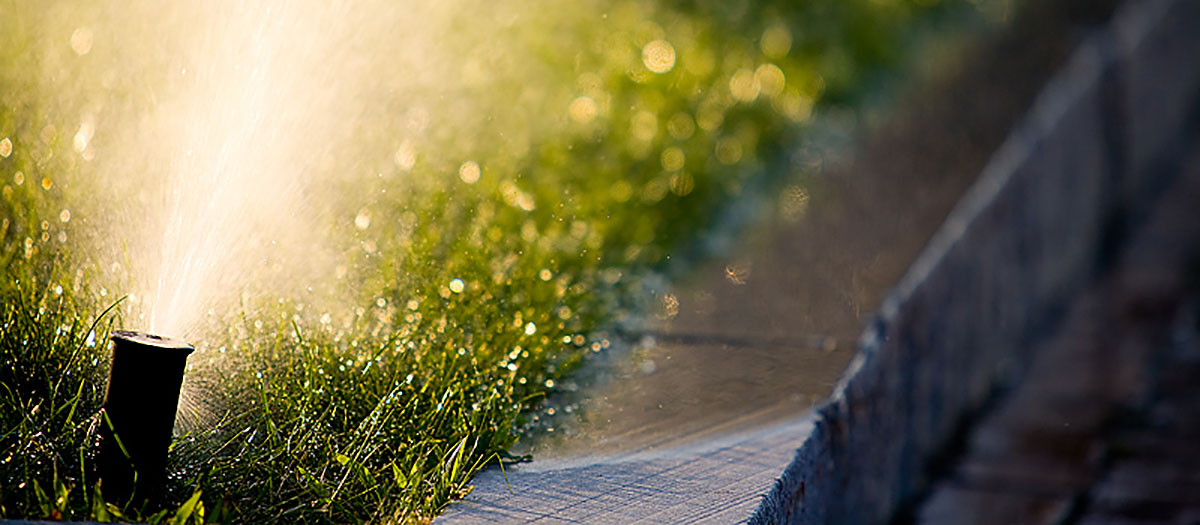Water from a sprinkler runs off grass and down a street