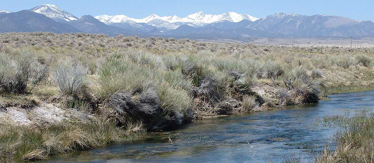 A stream running through ranches in Snake Valley, NV