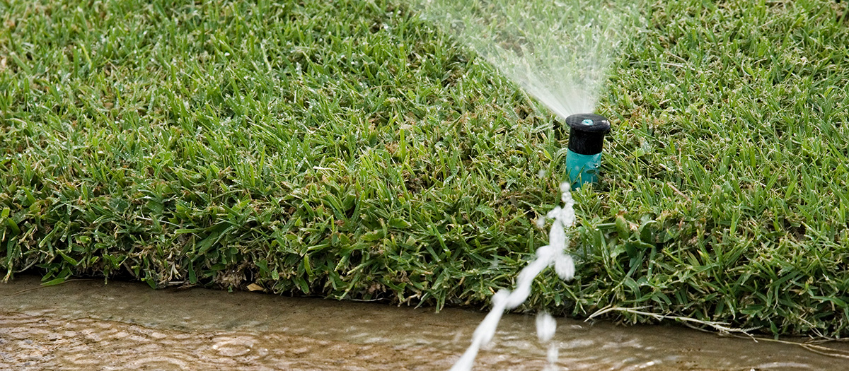 A leaking lawn sprinkler