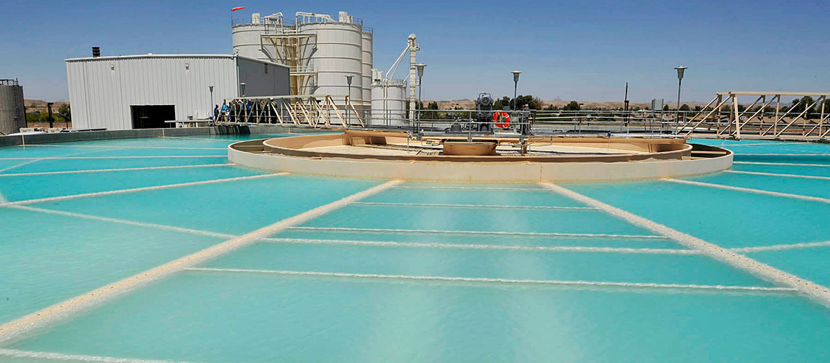 A closeup of the treatment pool at the Yuma Desalting Plant